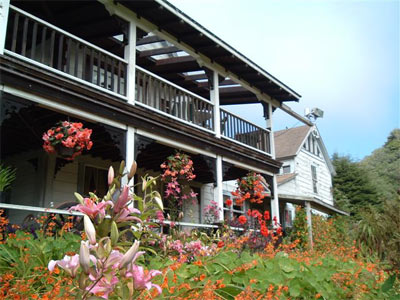 Lillies, begonias... | Howard Creek Ranch